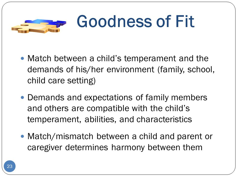 Goodness of Fit Match between a child's temperament and the demands of his/her environment (family, school, child care setting)