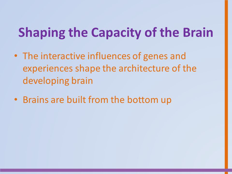 Shaping the Capacity of the Brain