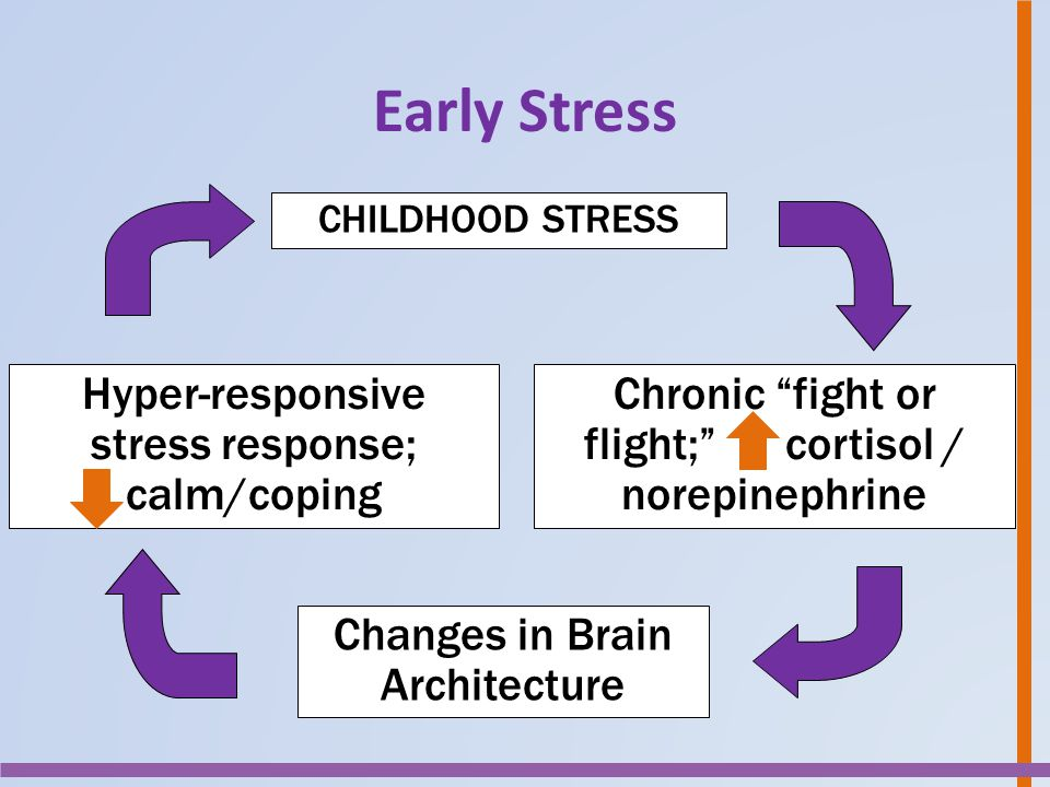 Early Stress Hyper-responsive stress response; calm/coping