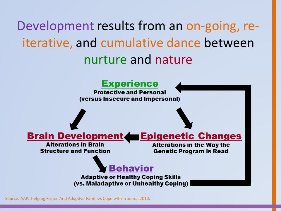 Development results from an on-going, re-iterative, and cumulative dance between nurture and nature
