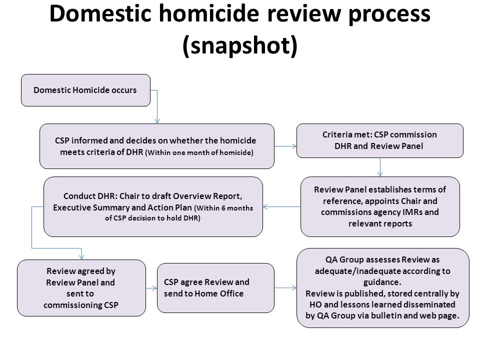 Domestic homicide review process (snapshot)