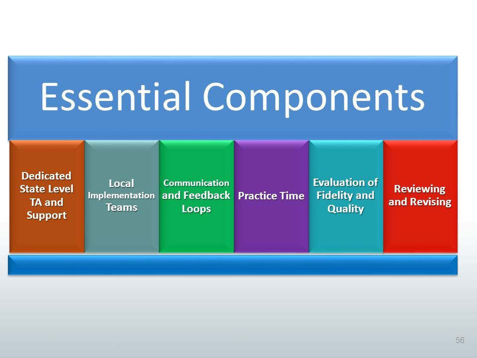 Essential Components Dedicated State Level TA and Support