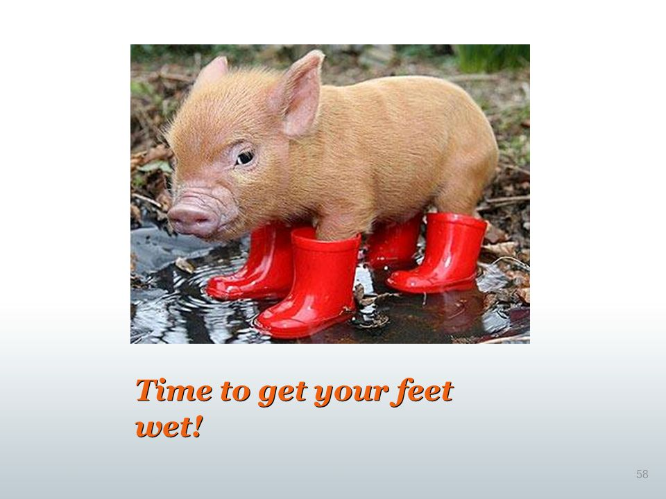 Time to get your feet wet!