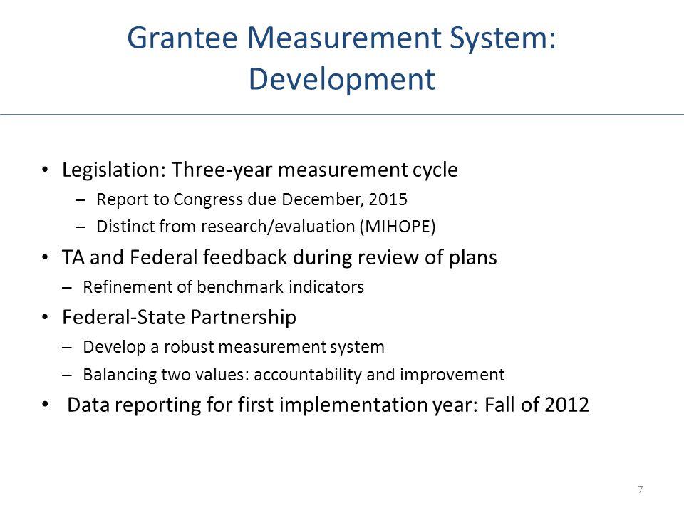 Grantee Measurement System: Development