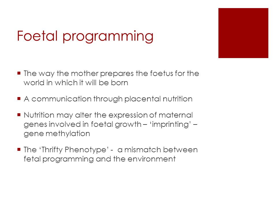 Foetal programming The way the mother prepares the foetus for the world in which it will be born. A communication through placental nutrition.