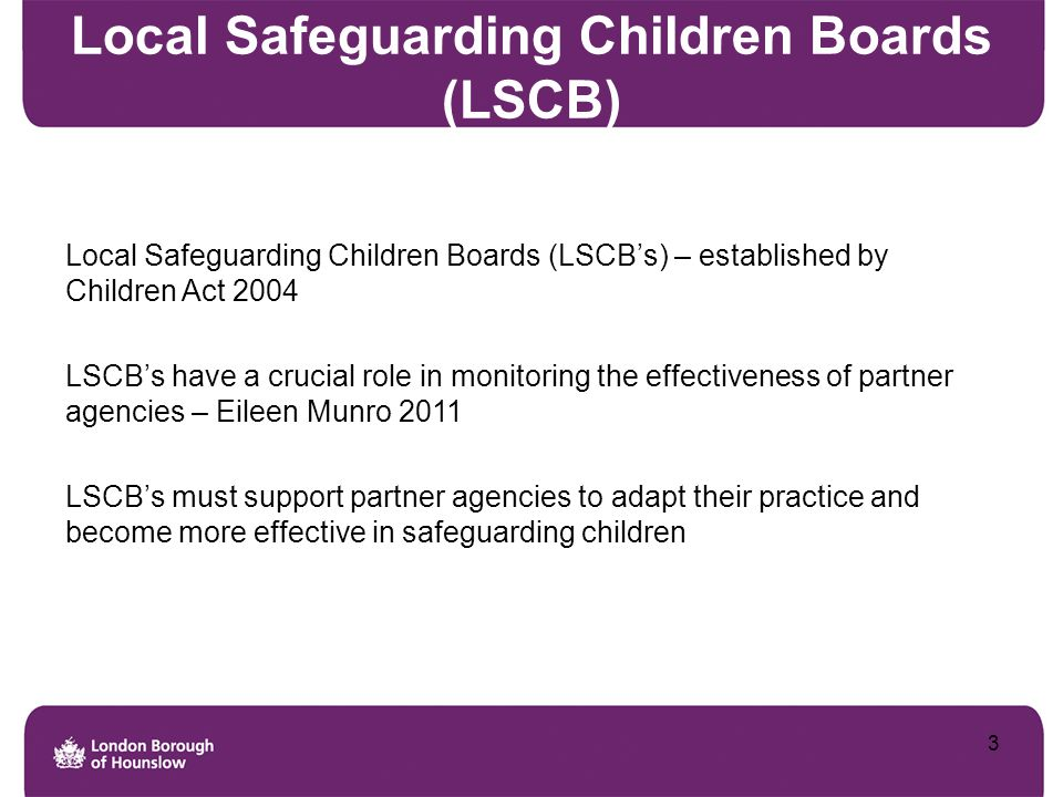 Local Safeguarding Children Boards (LSCB)