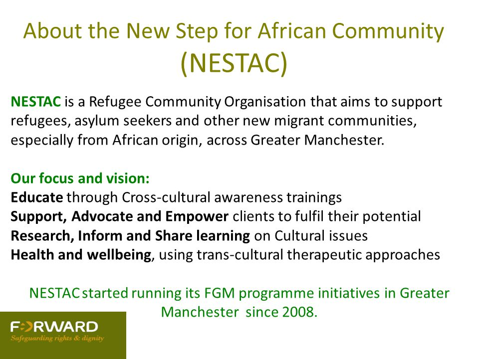 About the New Step for African Community (NESTAC)