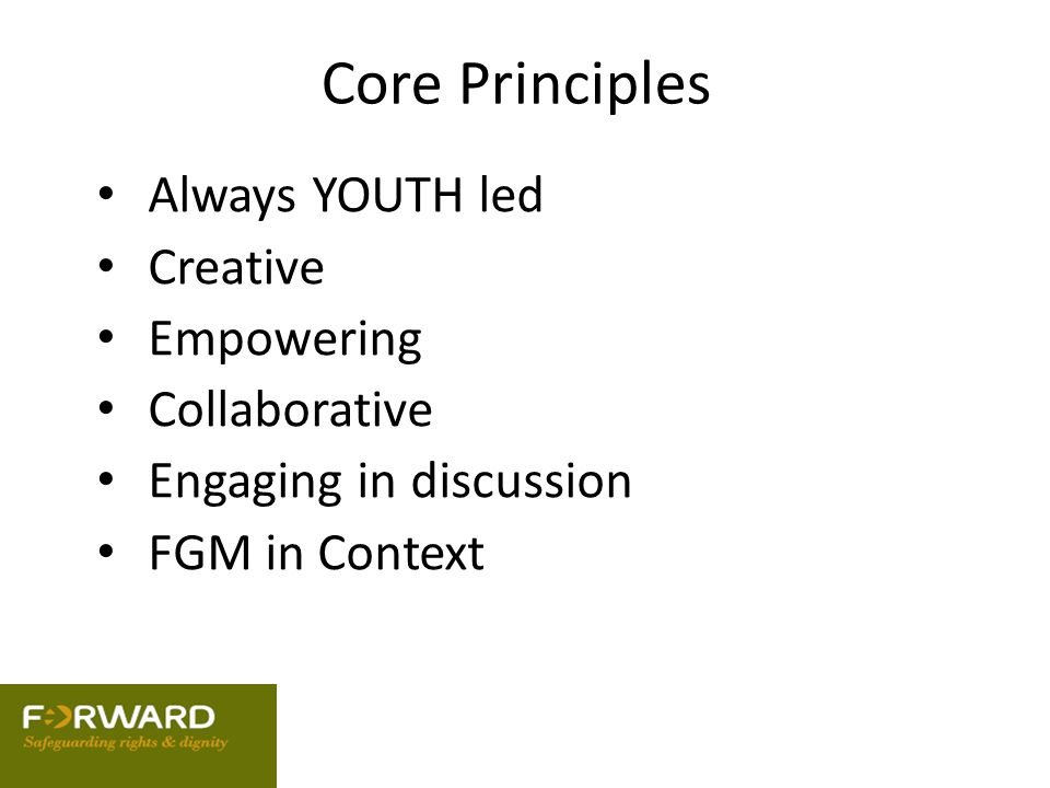 Core Principles Always YOUTH led Creative Empowering Collaborative