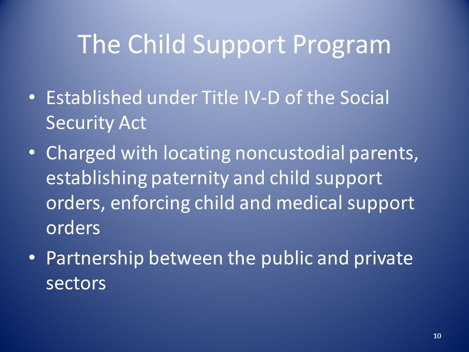 The Child Support Program