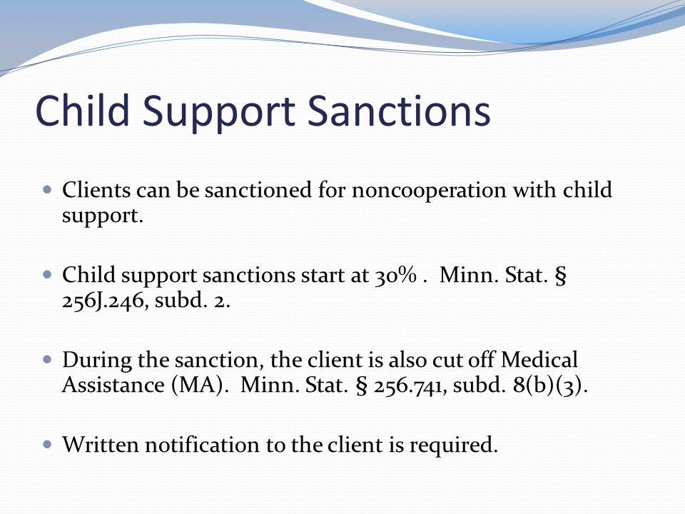 Child Support Sanctions