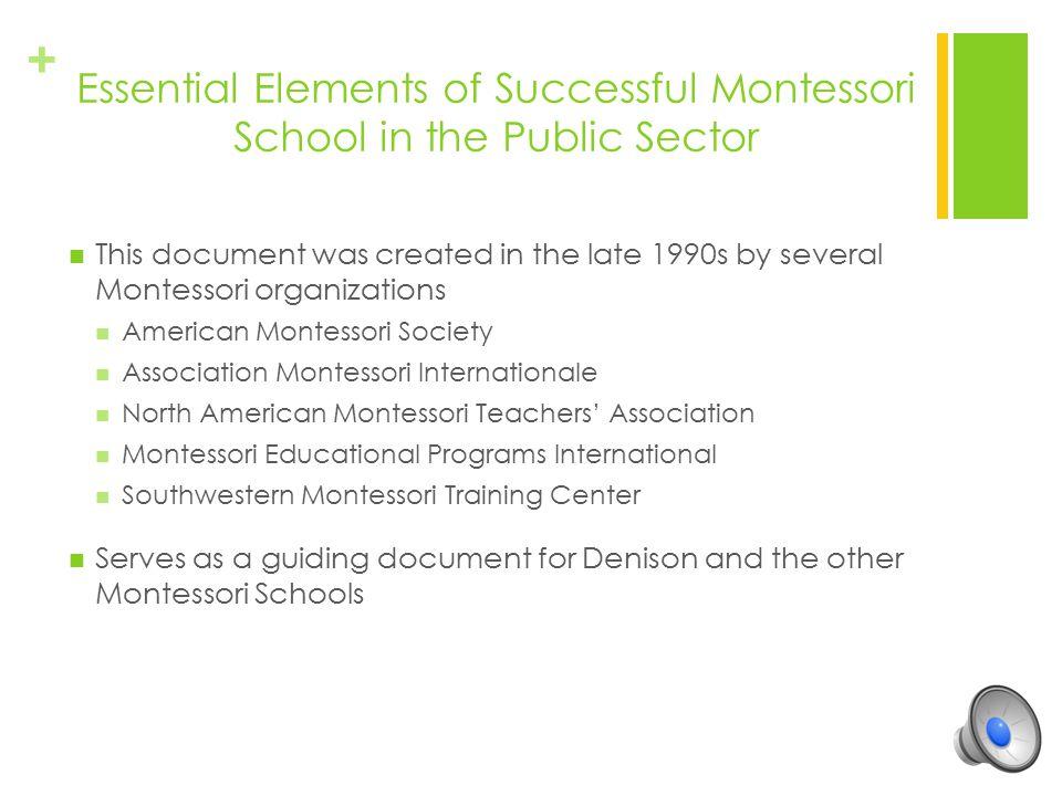 Essential Elements of Successful Montessori School in the Public Sector