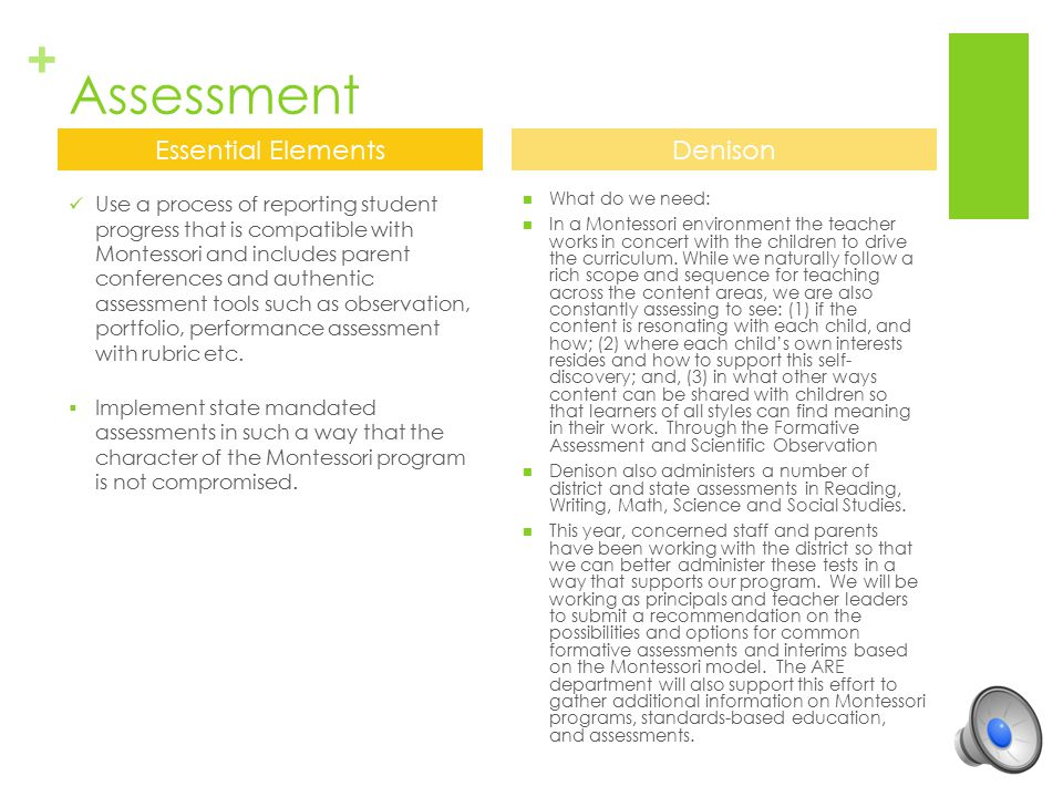 Assessment Essential Elements Denison
