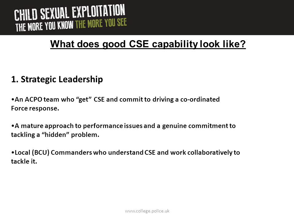 What does good CSE capability look like