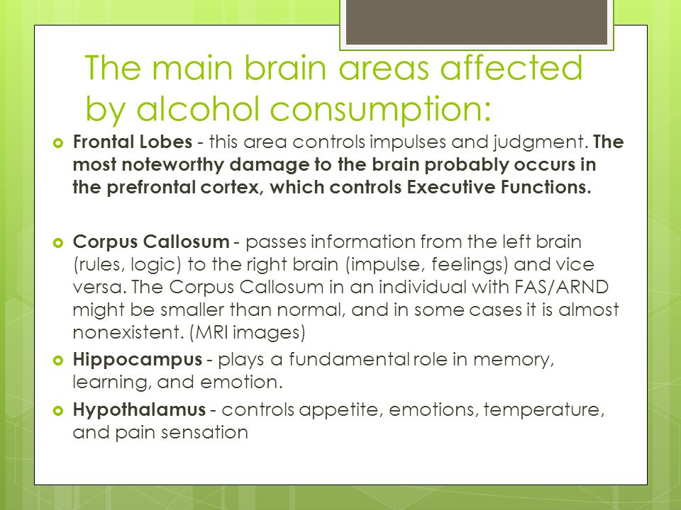The main brain areas affected by alcohol consumption: