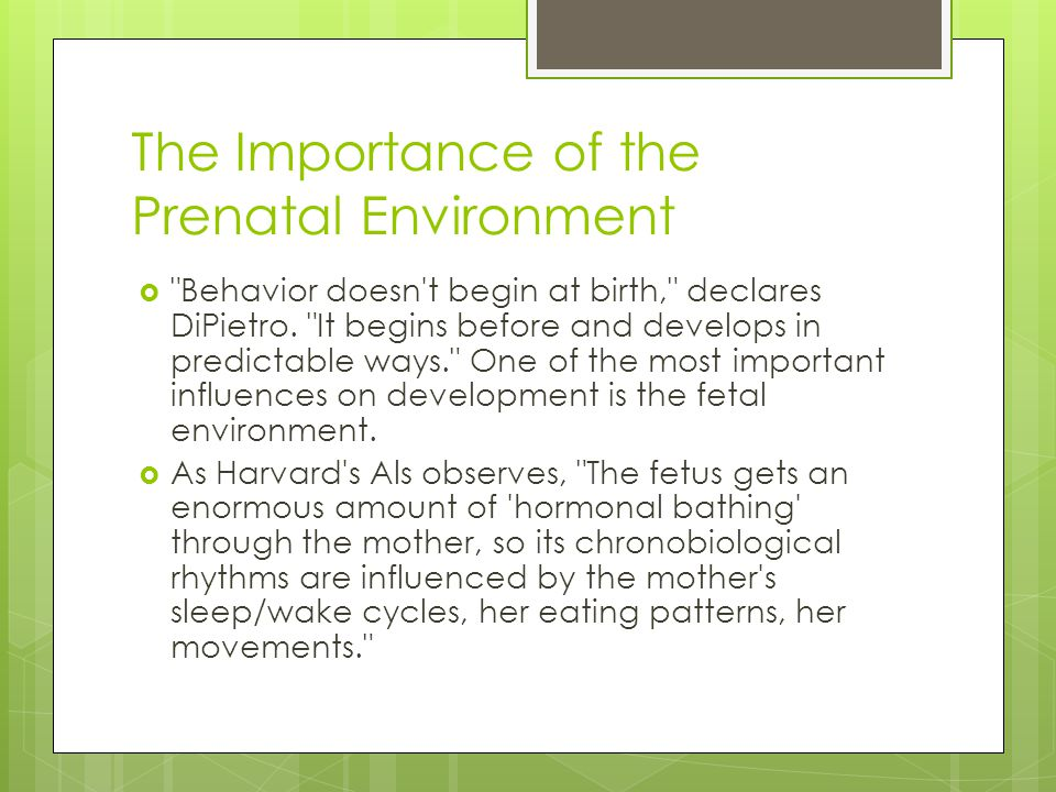 The Importance of the Prenatal Environment