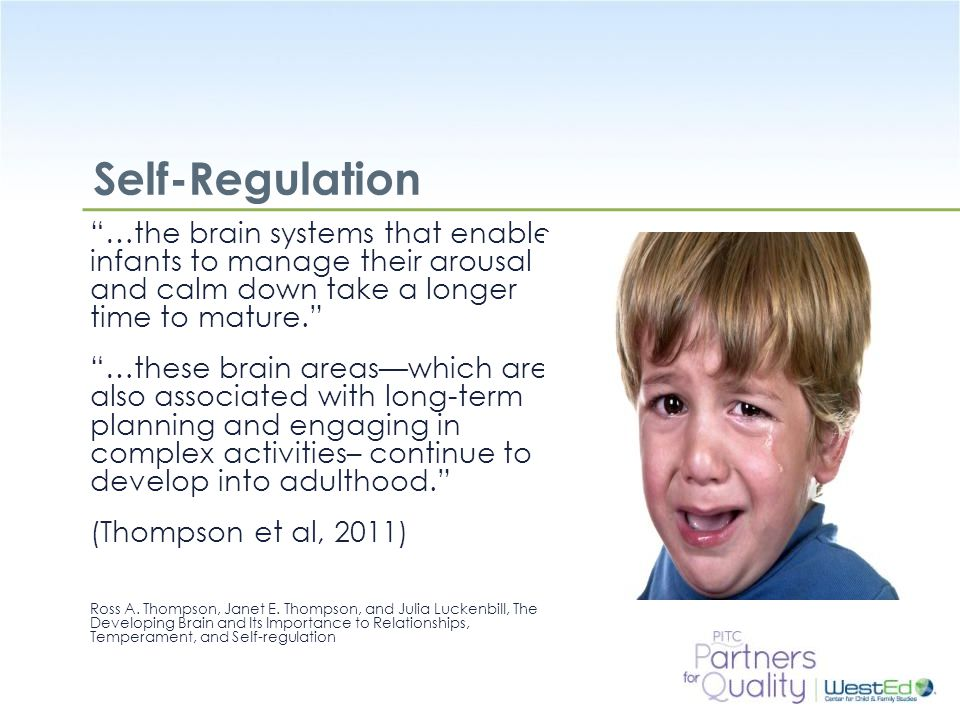 Self-Regulation …the brain systems that enable infants to manage their arousal and calm down take a longer time to mature.