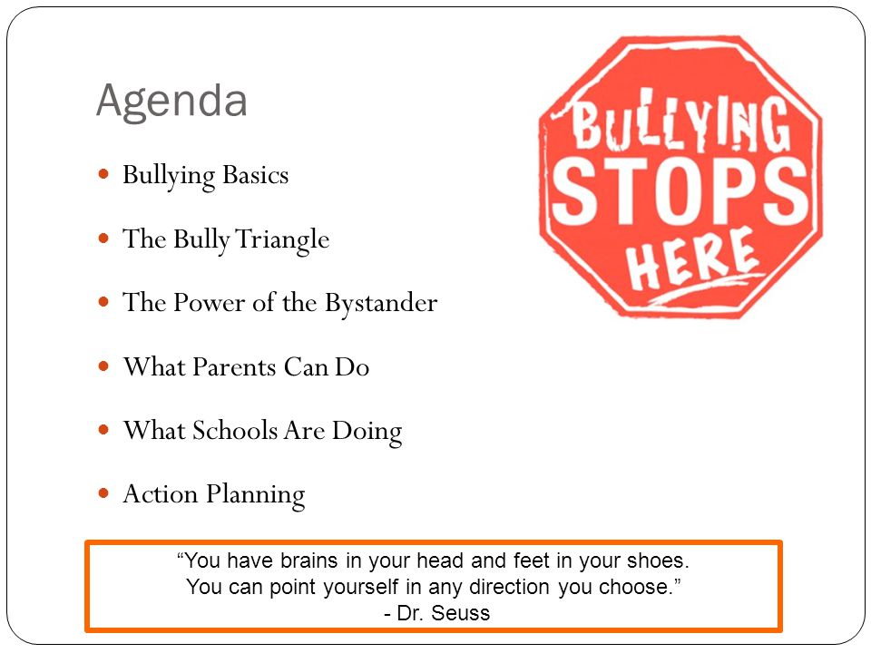 Agenda Bullying Basics The Bully Triangle The Power of the Bystander