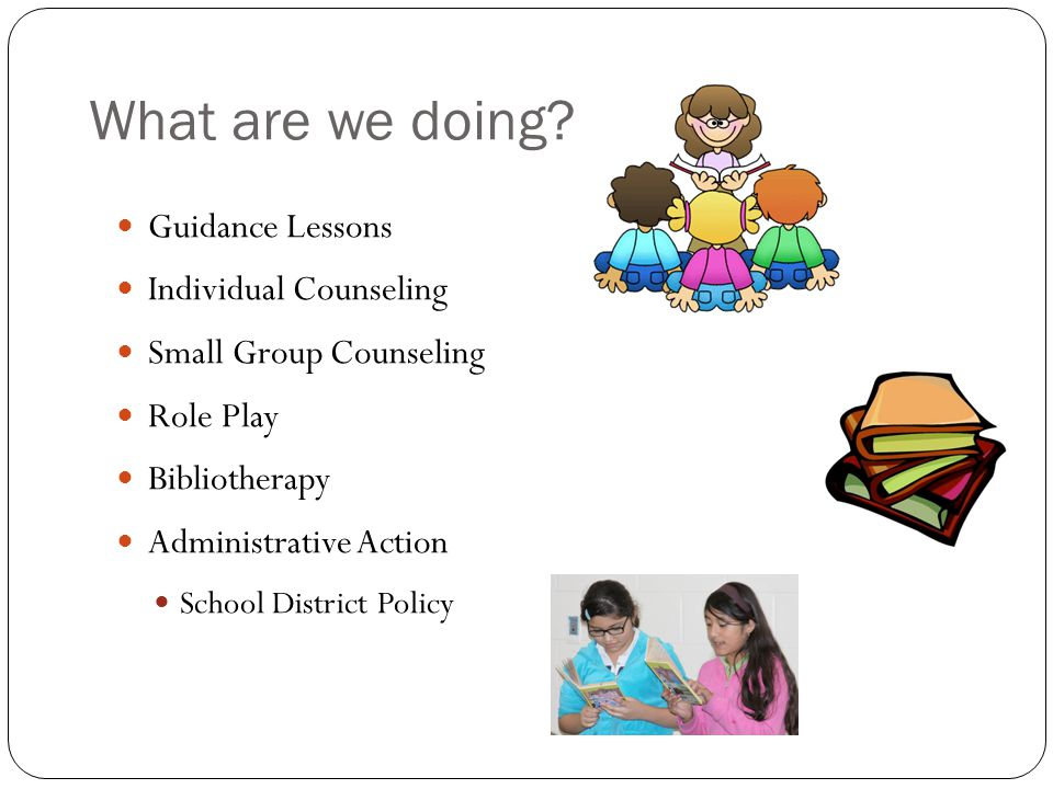 What are we doing Guidance Lessons Individual Counseling