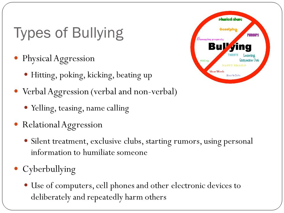 Types of Bullying Physical Aggression