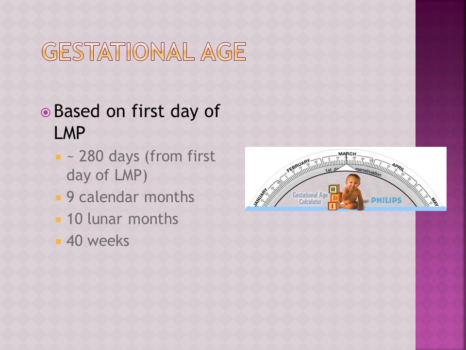Gestational Age Based on first day of LMP