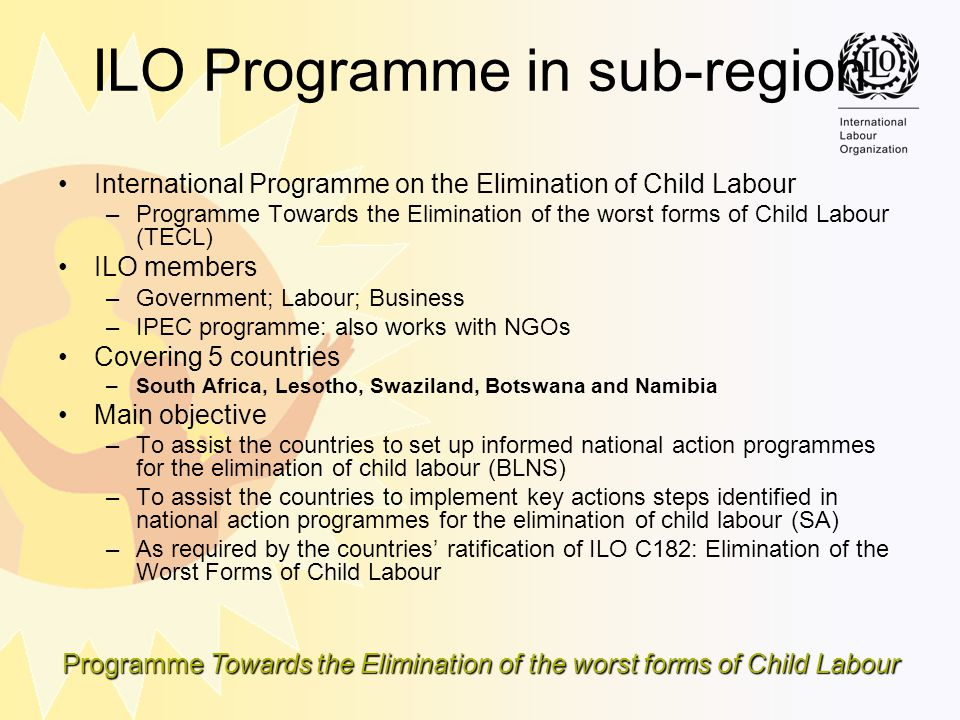 ILO Programme in sub-region