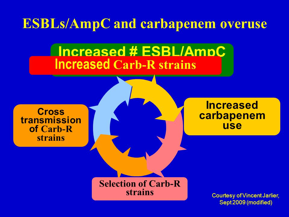 ESBLs/AmpC and carbapenem overuse