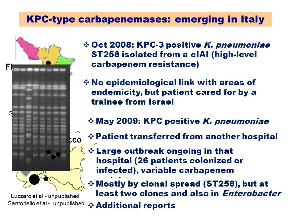 KPC-type carbapenemases: emerging in Italy