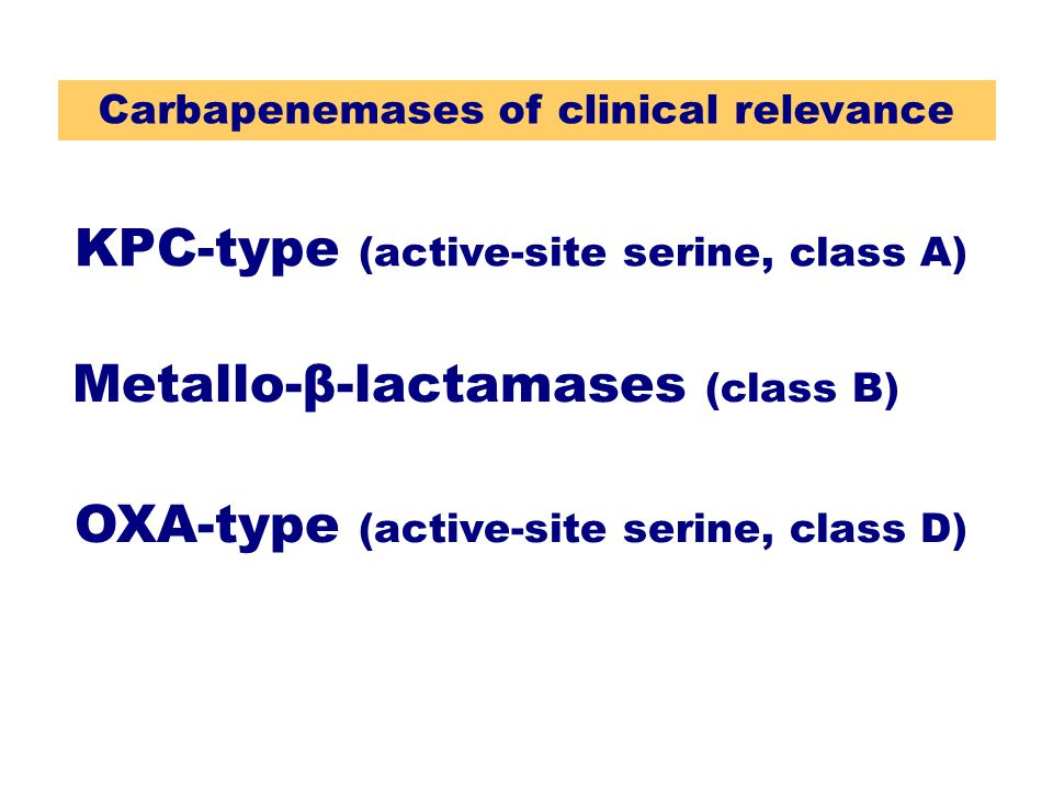 Carbapenemases of clinical relevance
