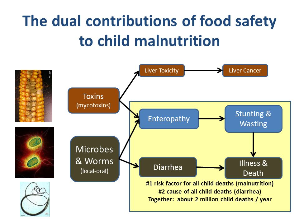 The dual contributions of food safety to child malnutrition