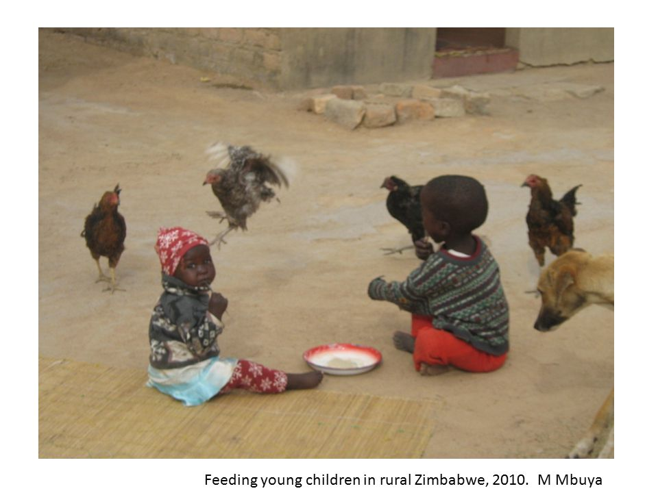 Feeding young children in rural Zimbabwe, 2010. M Mbuya