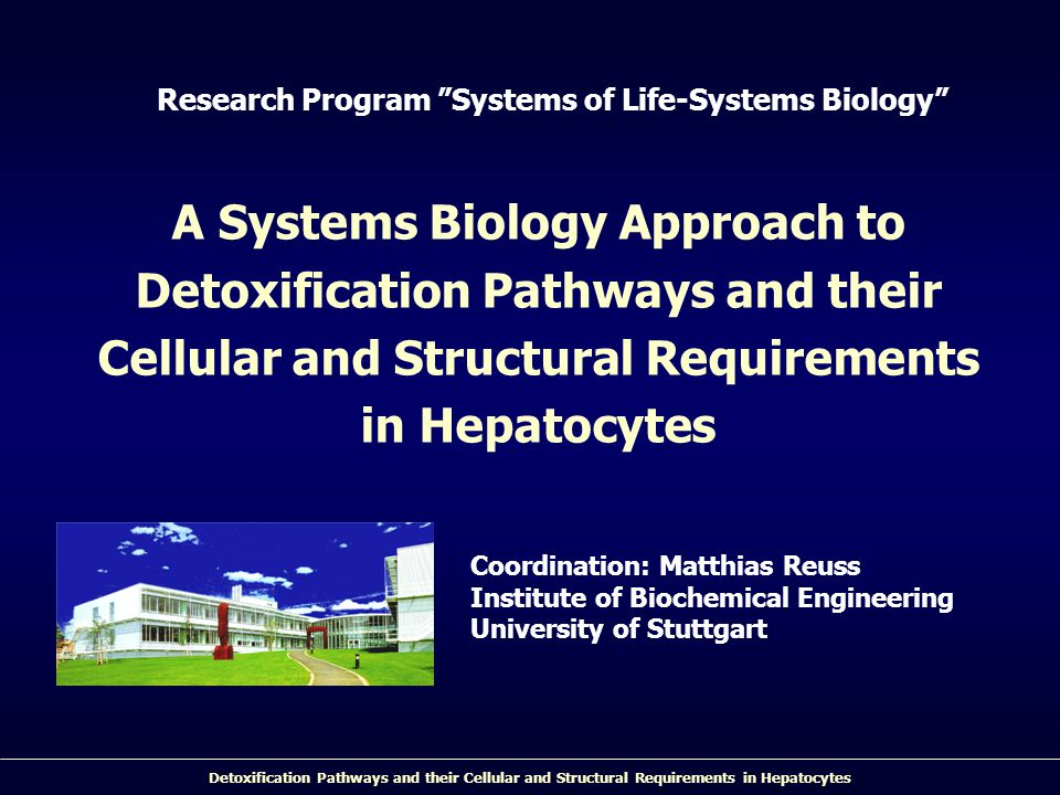 Research Program Systems of Life-Systems Biology