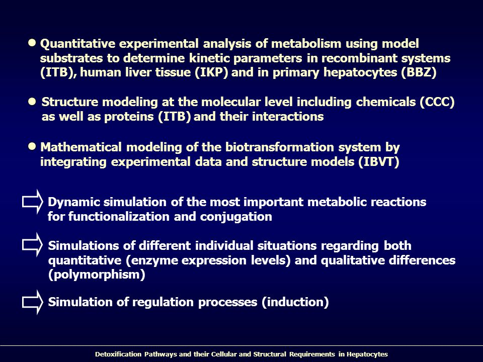 Quantitative experimental analysis of metabolism using model