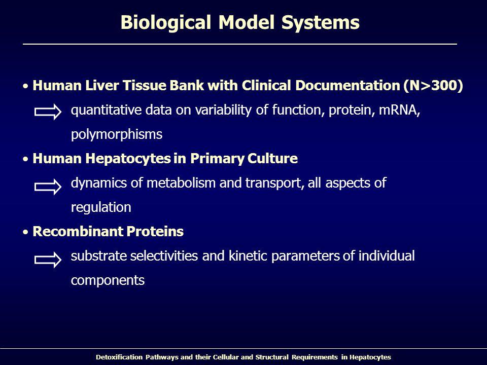 Biological Model Systems