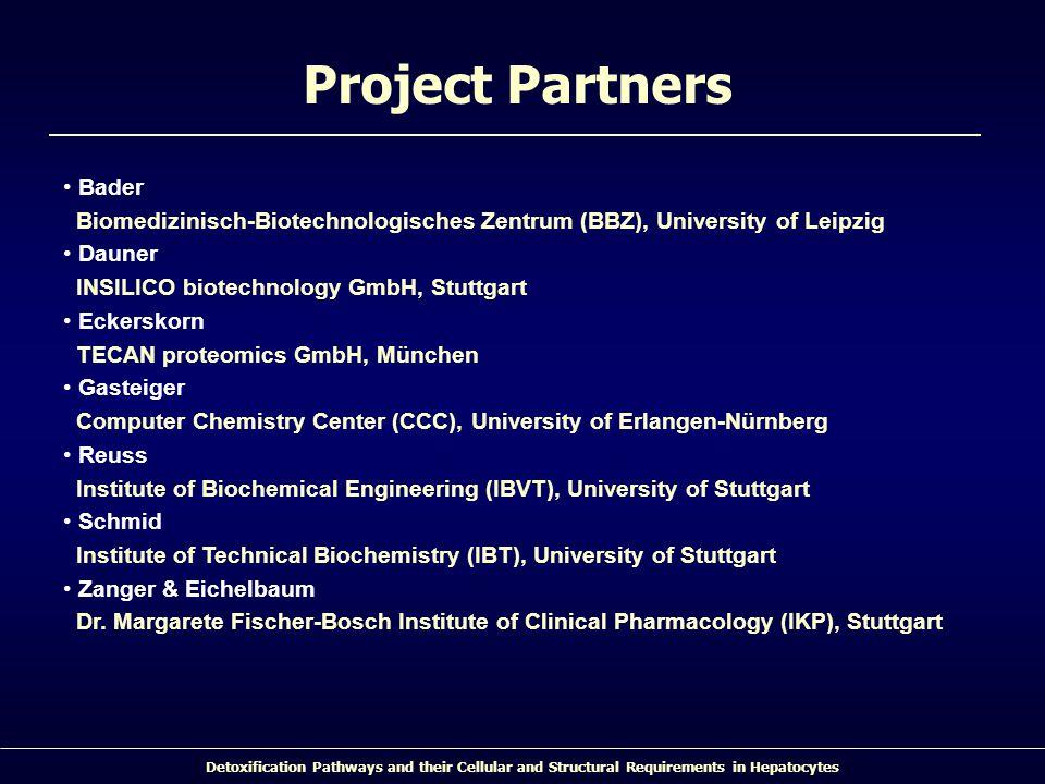 Project Partners Bader Biomedizinisch-Biotechnologisches Zentrum (BBZ), University of Leipzig. Dauner INSILICO biotechnology GmbH, Stuttgart.