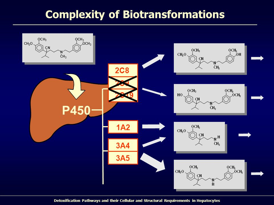 Complexity of Biotransformations