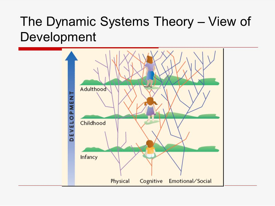 The Dynamic Systems Theory – View of Development