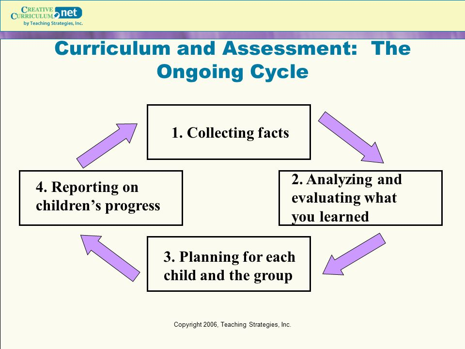 Curriculum and Assessment: The Ongoing Cycle