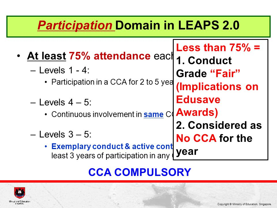 Participation Domain in LEAPS 2.0