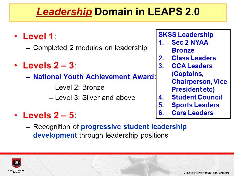 Leadership Domain in LEAPS 2.0