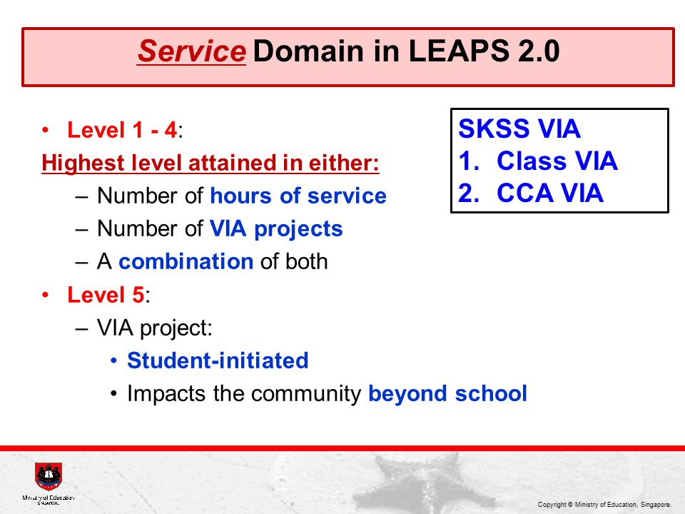 Service Domain in LEAPS 2.0