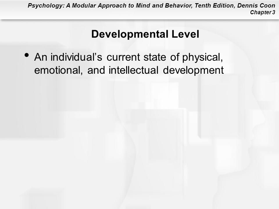 Developmental Level An individual's current state of physical, emotional, and intellectual development.
