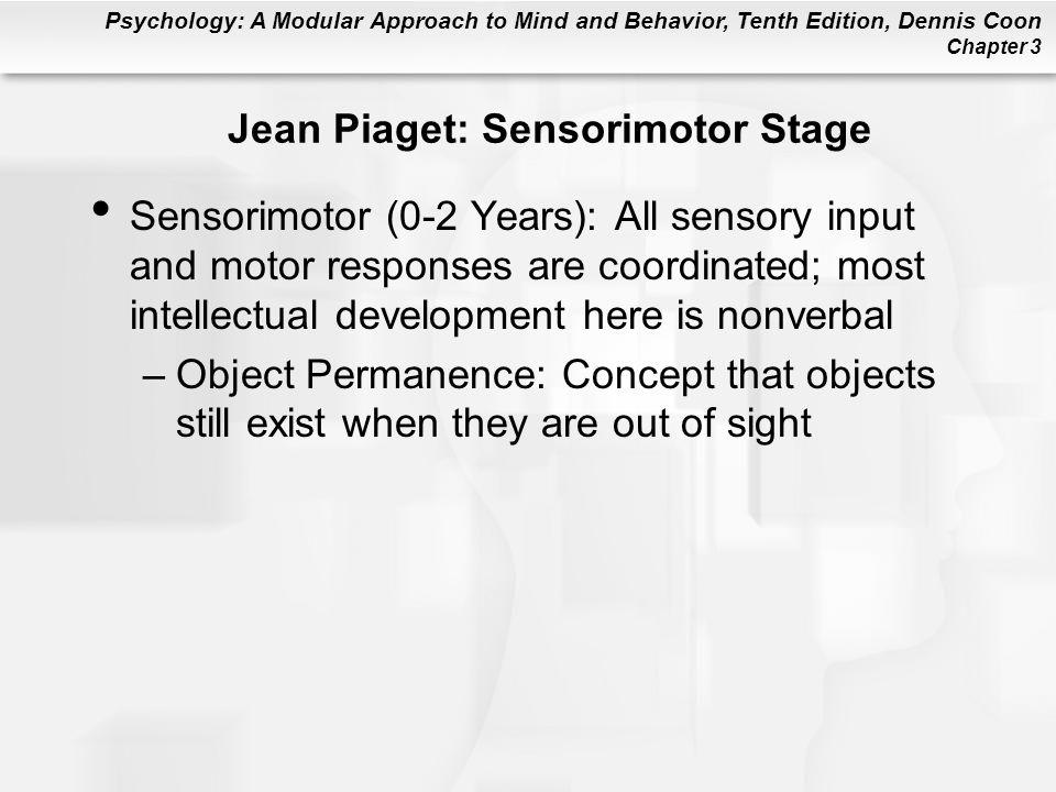 Jean Piaget: Sensorimotor Stage