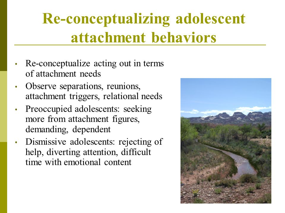 Re-conceptualizing adolescent attachment behaviors