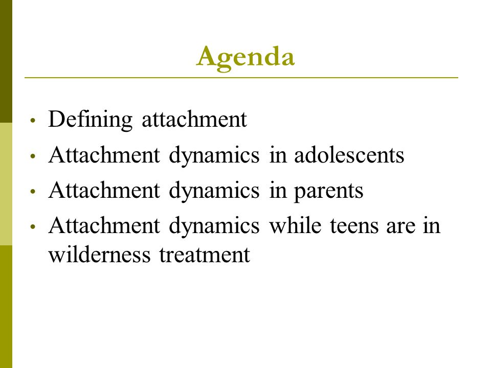 Agenda Defining attachment Attachment dynamics in adolescents
