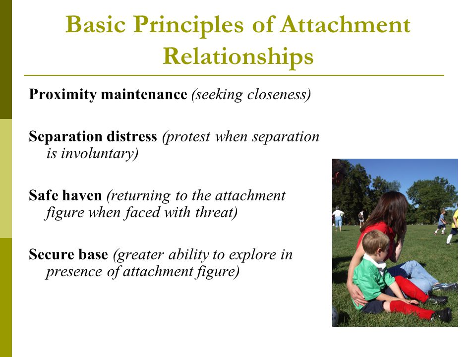 Basic Principles of Attachment Relationships