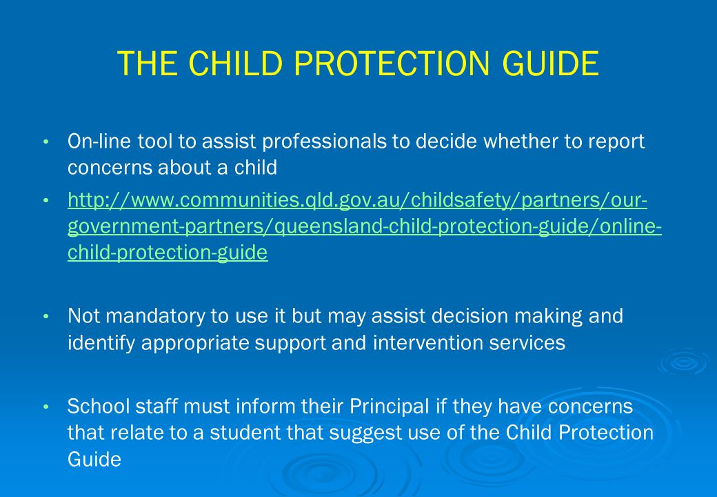 THE CHILD PROTECTION GUIDE