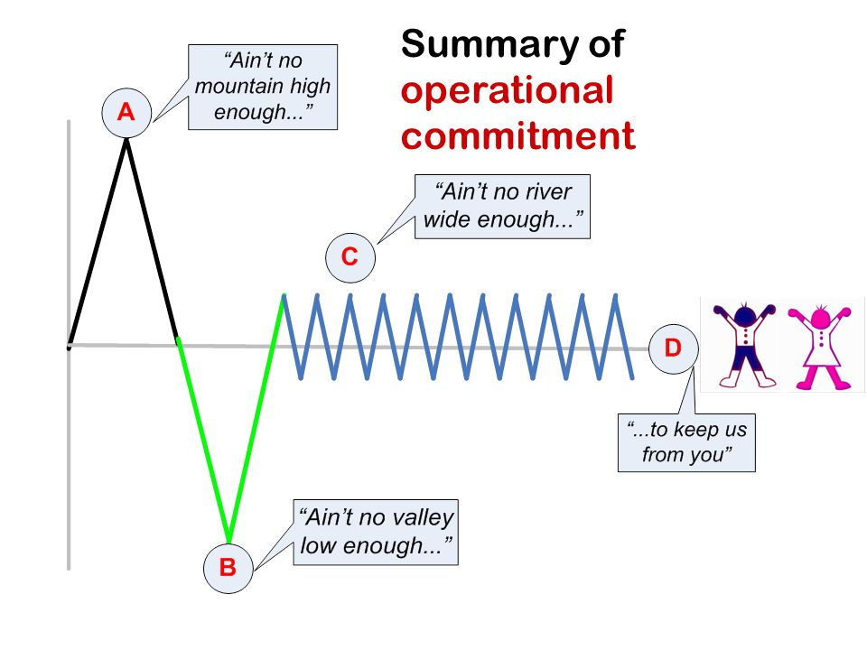 Summary of operational commitment