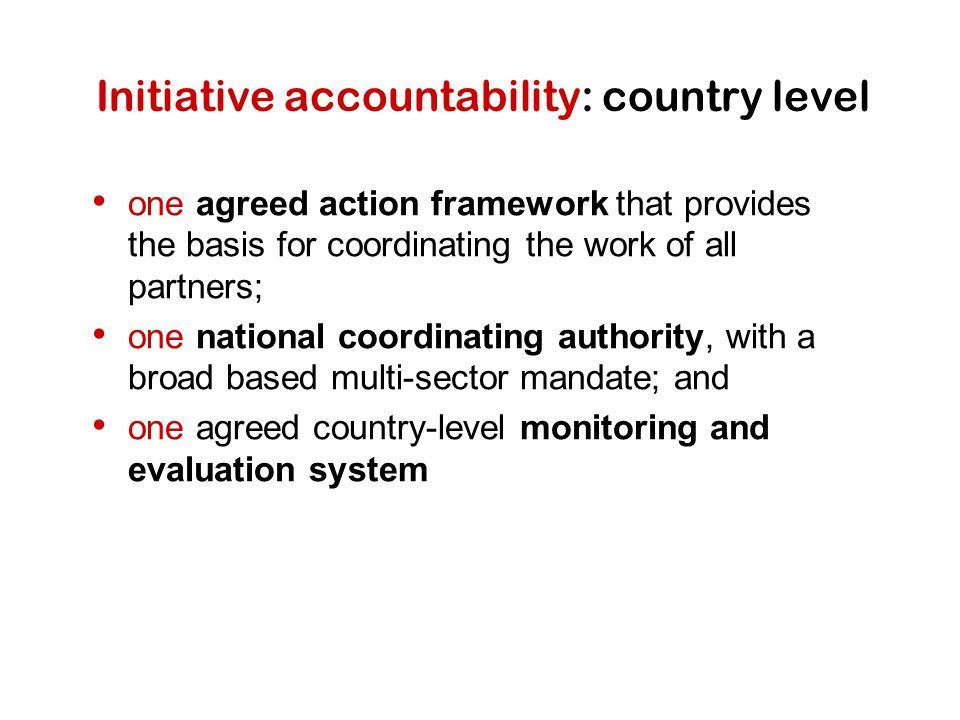 Initiative accountability: country level