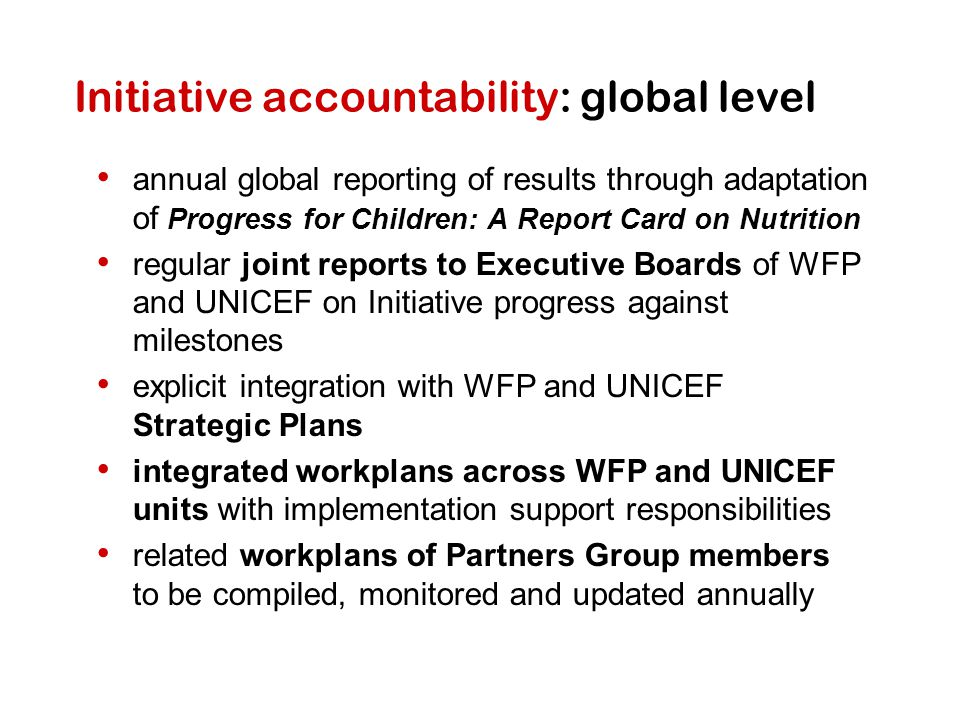 Initiative accountability: global level