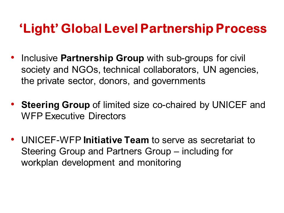 'Light' Global Level Partnership Process